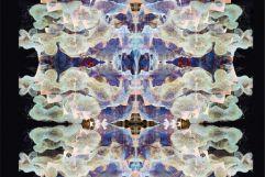 grosssterka-pareidolia-photo02